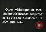 Image of foot and mouth disease United States USA, 1925, second 41 stock footage video 65675022116