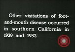 Image of foot and mouth disease United States USA, 1925, second 44 stock footage video 65675022116
