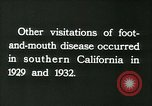 Image of foot and mouth disease United States USA, 1925, second 46 stock footage video 65675022116