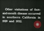 Image of foot and mouth disease United States USA, 1925, second 48 stock footage video 65675022116