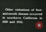 Image of foot and mouth disease United States USA, 1925, second 49 stock footage video 65675022116
