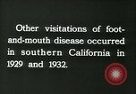 Image of foot and mouth disease United States USA, 1925, second 50 stock footage video 65675022116