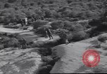 Image of American soldiers Lebanon, 1958, second 29 stock footage video 65675022121