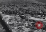Image of American soldiers Lebanon, 1958, second 33 stock footage video 65675022121