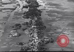 Image of Iskander Mirza Afghanistan, 1962, second 19 stock footage video 65675022128