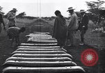 Image of Suez Canal Egypt, 1935, second 54 stock footage video 65675022142