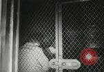 Image of Rosenbergs Convicted United States USA, 1951, second 13 stock footage video 65675022171