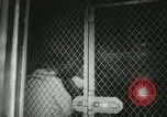 Image of Rosenbergs Convicted United States USA, 1951, second 15 stock footage video 65675022171