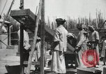 Image of Date packing Mesopotamia Iraq, 1929, second 58 stock footage video 65675022174