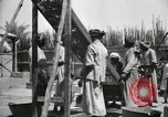 Image of Date packing Mesopotamia Iraq, 1929, second 59 stock footage video 65675022174