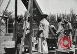 Image of Date packing Mesopotamia Iraq, 1929, second 60 stock footage video 65675022174