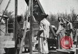 Image of Date packing Mesopotamia Iraq, 1929, second 61 stock footage video 65675022174
