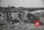 Image of date transport and cultivation Basra Iraq, 1929, second 62 stock footage video 65675022178