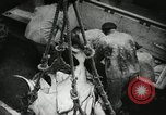 Image of Activity at the Port of Seattle Seattle Washington USA, 1935, second 53 stock footage video 65675022202