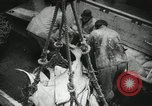Image of Activity at the Port of Seattle Seattle Washington USA, 1935, second 54 stock footage video 65675022202