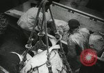 Image of Activity at the Port of Seattle Seattle Washington USA, 1935, second 57 stock footage video 65675022202