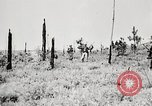 Image of Seargent Collins' team advances United States USA, 1965, second 35 stock footage video 65675022236