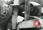 Image of Spanish submarines Spain, 1942, second 48 stock footage video 65675022358