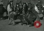 Image of Young children riding horses Kansas City Missouri USA, 1934, second 35 stock footage video 65675022443