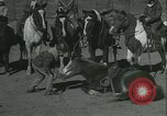 Image of Young children riding horses Kansas City Missouri USA, 1934, second 36 stock footage video 65675022443
