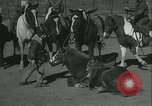 Image of Young children riding horses Kansas City Missouri USA, 1934, second 37 stock footage video 65675022443