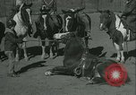 Image of Young children riding horses Kansas City Missouri USA, 1934, second 40 stock footage video 65675022443