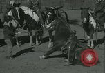 Image of Young children riding horses Kansas City Missouri USA, 1934, second 42 stock footage video 65675022443
