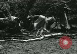 Image of Floods and cyclone Koro Japan, 1933, second 54 stock footage video 65675022445