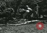 Image of Floods and cyclone Koro Japan, 1933, second 57 stock footage video 65675022445