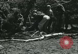 Image of Floods and cyclone Koro Japan, 1933, second 60 stock footage video 65675022445