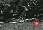 Image of Floods and cyclone Koro Japan, 1933, second 61 stock footage video 65675022445