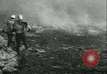 Image of Forest fire Forest Grove Oregon USA, 1933, second 53 stock footage video 65675022456