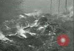 Image of Forest fire Forest Grove Oregon USA, 1933, second 59 stock footage video 65675022456