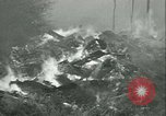 Image of Forest fire Forest Grove Oregon USA, 1933, second 60 stock footage video 65675022456