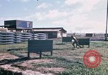 Image of United States 50th Infantry Vietnam, 1967, second 8 stock footage video 65675022579