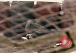 Image of Uniter States Marines Corps Khe Sanh Vietnam, 1968, second 49 stock footage video 65675022601