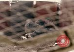 Image of Uniter States Marines Corps Khe Sanh Vietnam, 1968, second 51 stock footage video 65675022601
