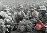 Image of Hawaiian pineapple workers resting Hawaii USA, 1916, second 32 stock footage video 65675022621