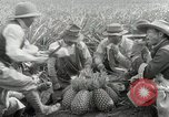 Image of Hawaiian pineapple workers resting Hawaii USA, 1916, second 42 stock footage video 65675022621
