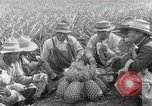 Image of Hawaiian pineapple workers resting Hawaii USA, 1916, second 45 stock footage video 65675022621