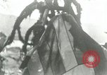 Image of Sesquicentennial of Captain Cook's discovery of Hawaii Kealakekua Bay Hawaii USA, 1928, second 46 stock footage video 65675022673
