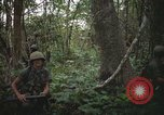 Image of Army Airborne operation in Vietnam war Vietnam, 1965, second 7 stock footage video 65675022707