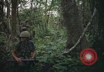 Image of Army Airborne operation in Vietnam war Vietnam, 1965, second 11 stock footage video 65675022707