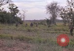 Image of Army Airborne operation in Vietnam war Vietnam, 1965, second 21 stock footage video 65675022707
