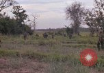 Image of Army Airborne operation in Vietnam war Vietnam, 1965, second 22 stock footage video 65675022707