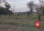Image of Army Airborne operation in Vietnam war Vietnam, 1965, second 24 stock footage video 65675022707