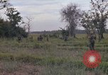Image of Army Airborne operation in Vietnam war Vietnam, 1965, second 25 stock footage video 65675022707