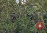 Image of Army Airborne operation in Vietnam war Vietnam, 1965, second 42 stock footage video 65675022707