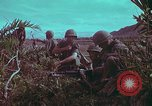 Image of 1st Battalion of 173rd Airborne Brigade Vietnam, 1965, second 14 stock footage video 65675022713