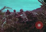 Image of 1st Battalion of 173rd Airborne Brigade Vietnam, 1965, second 15 stock footage video 65675022713